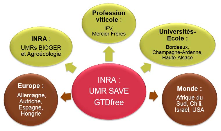 GTDfree structure