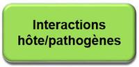 hote-pathogenes