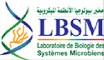 LBSM-Alger