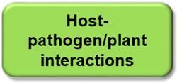 pathogen-plant