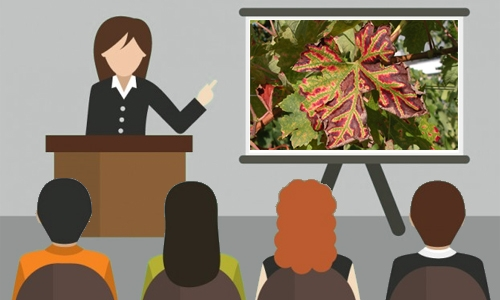 Seminars on GTDs