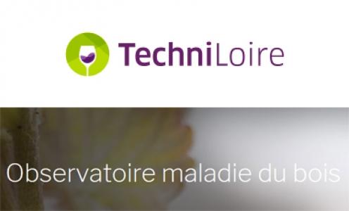 Observatoire des maladies du bois en pays de Loire