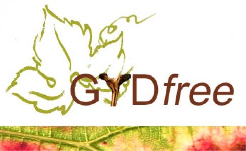 GTDfree steering committee
